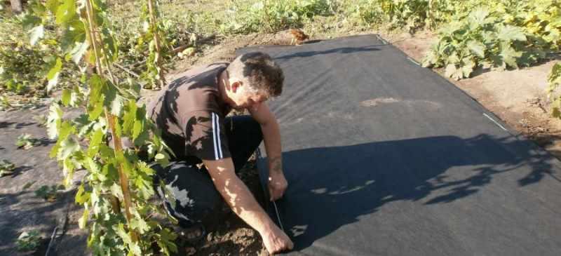 крепление агроволокна скобами черное от сорняков