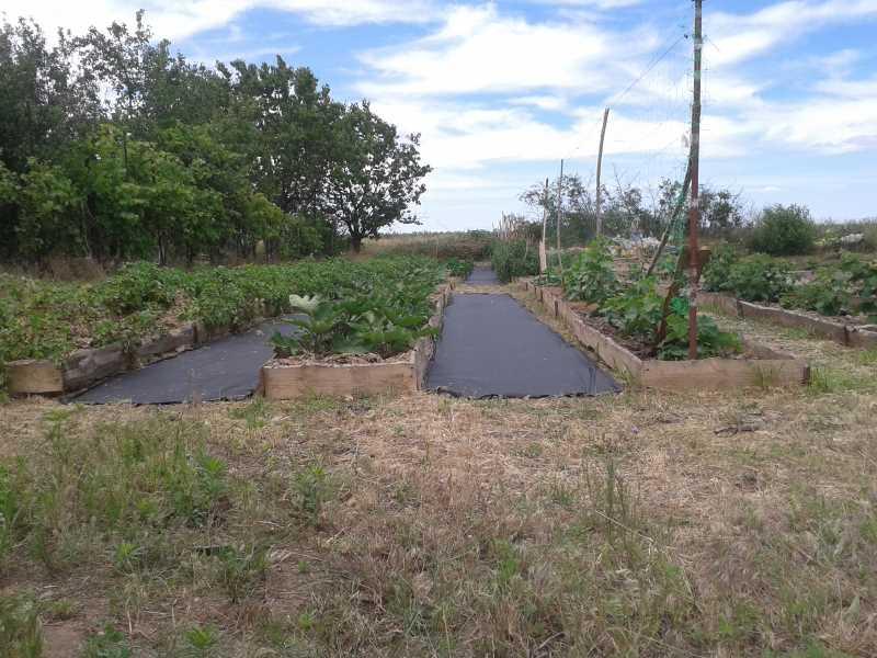 дорожки без сорняков агроволокно черное